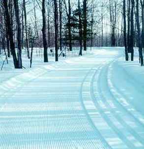 cross country trails groomed
