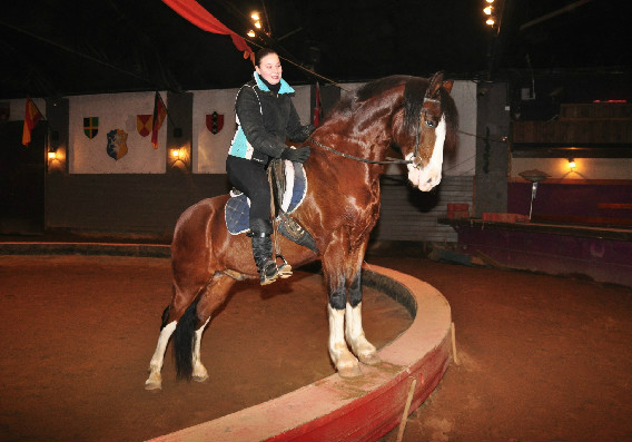 Agnes Turek and her American Warmblood Murdock