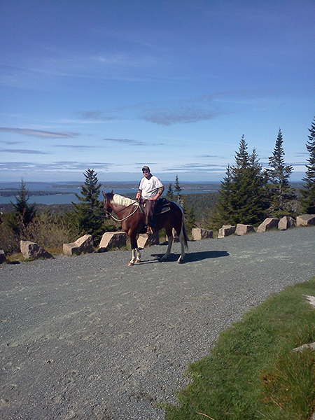 equestrian riding up day mountain in acadia national park