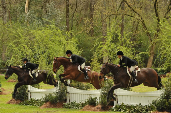 Expert Equestrian Articles 5 Great Equestrian