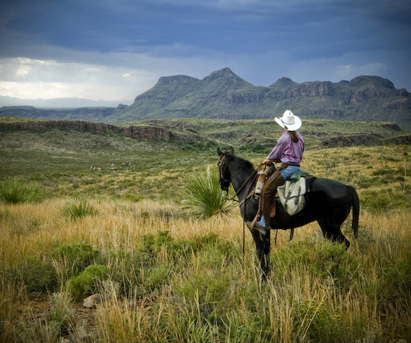 Big Bend State Park horseback riding
