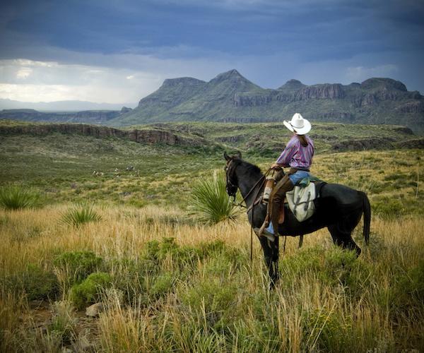 Big Bend State Park horseback riding