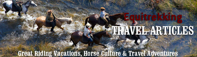 Equestrian Travel Articles