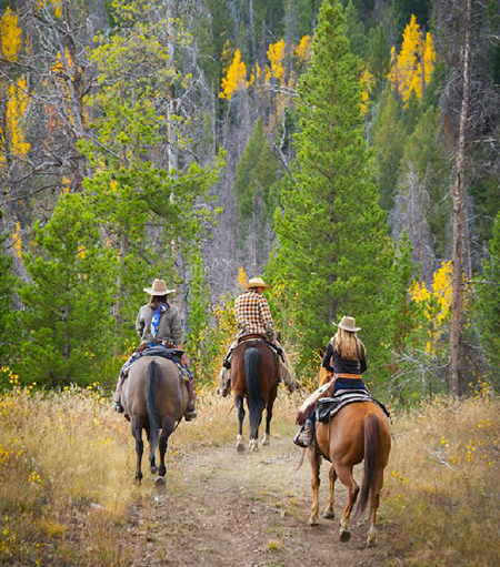 Riding in fall colors at C Lazy U in Colorado Equitrekking