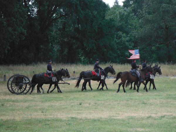 CHAS six horse artillery team
