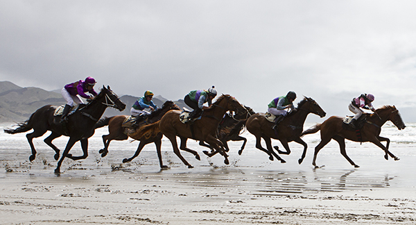 Beach races at Castlepoint Beach Races, an annual Wairarapa Event