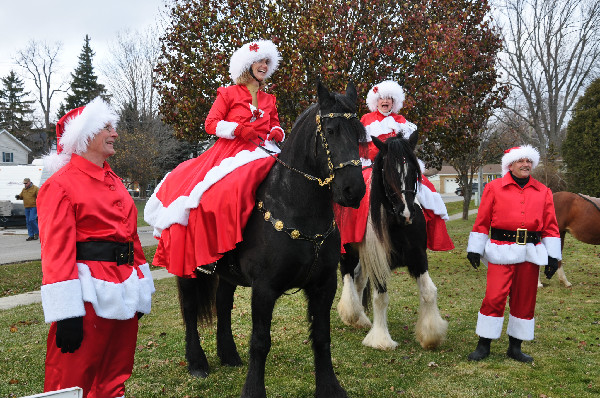 Christmas Horse Parade Nan Spadacence Michigan