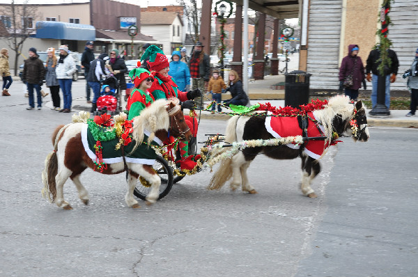 Christmas Horse Parade Gypsy Vanner