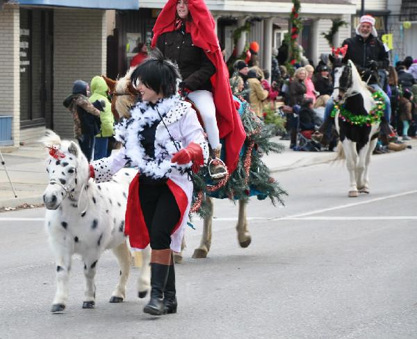 Christmas Horse Parade Miniature Horses
