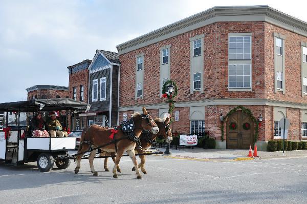 Christmas horse parade holidays mules
