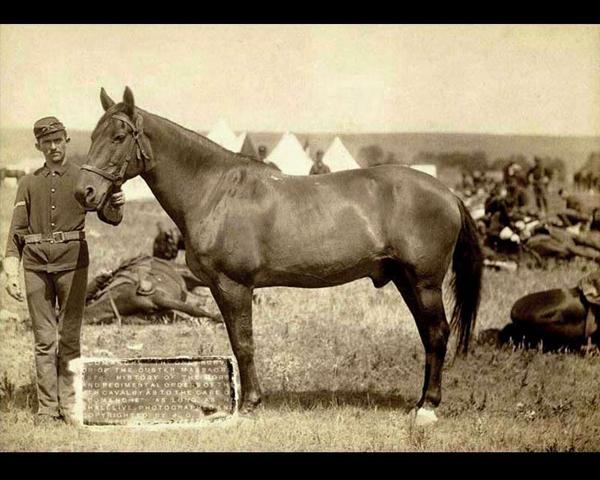 Comanche Public Domain