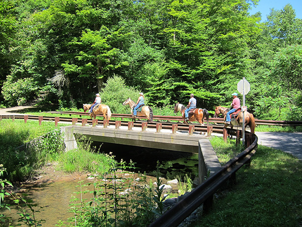 equestrians crossing bridge on thunder mountain trail