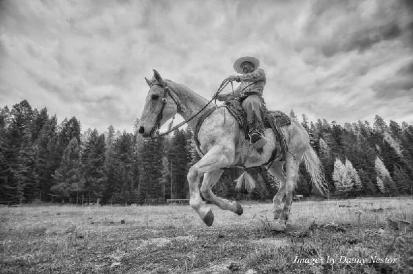 Danny Nestor loping cowboy