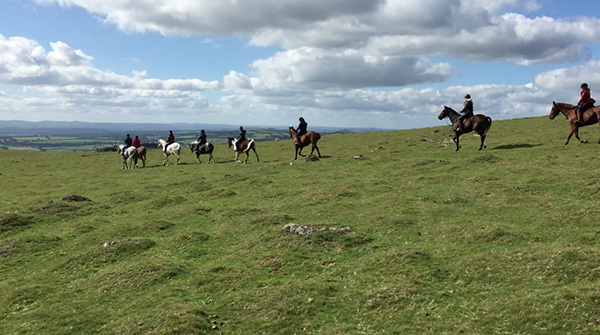 Dartmoor Derby UK horse riding