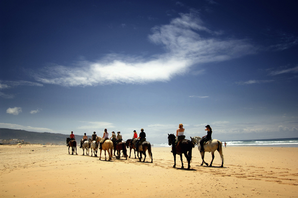 ELCR beach horseback riding