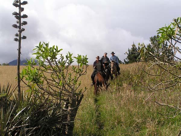 Ecuador horse riding
