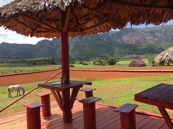 El Corazon del Valle Cafe Cuba horse riding