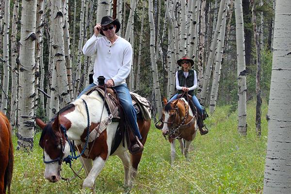 Elk Mountain Ranch aspen trees