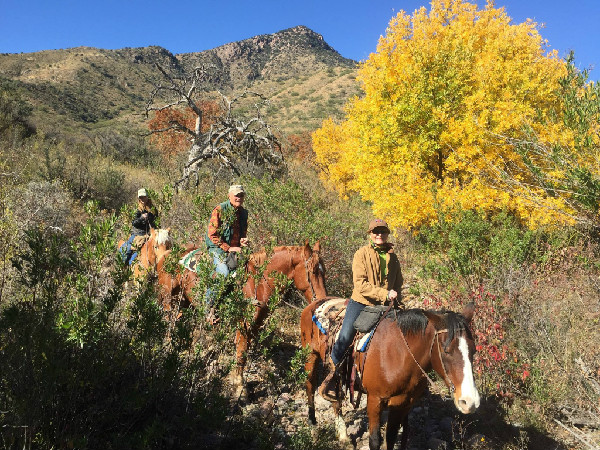 Elkhorn Ranch Arizona horseback holidays December