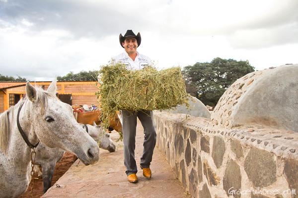 feeding the horses at Rancho Las Cascadas