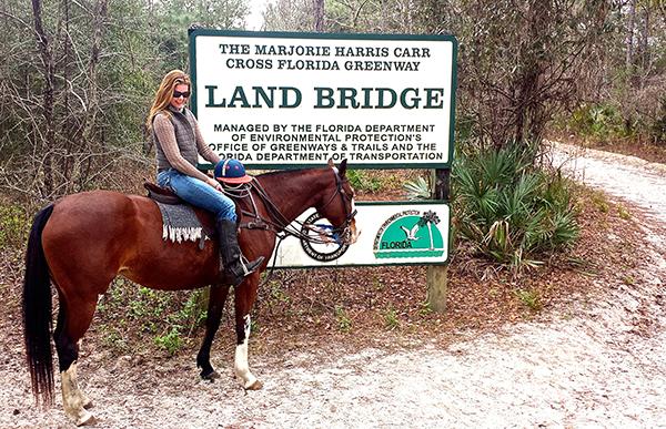 Florida Greenway horseback