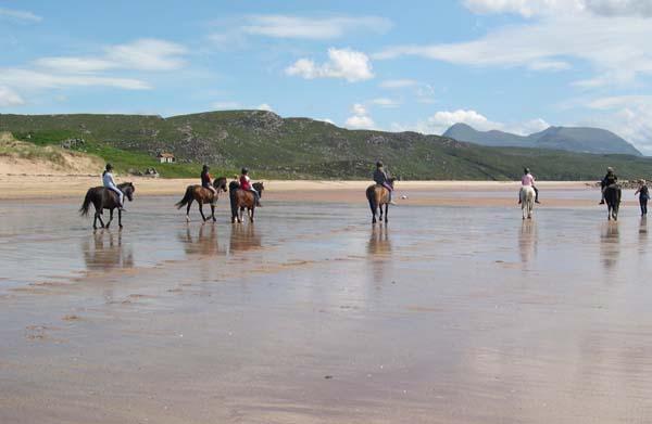 Gairloch Trekking Centre Horseback Riding