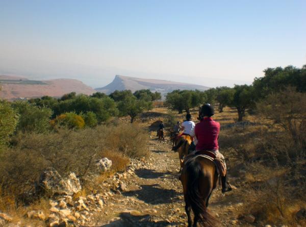 Galilee horseback riding holidays israel