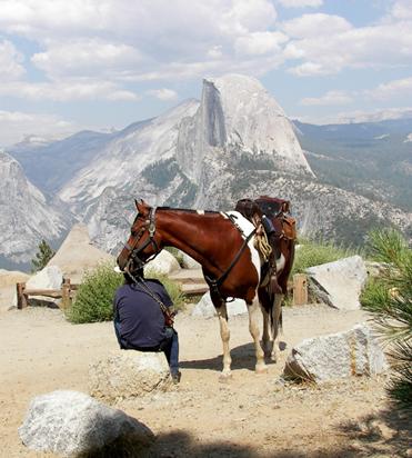 glacier point yosemite horse trails
