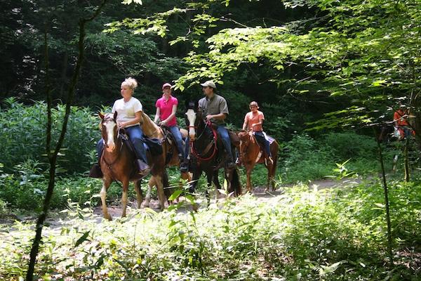 Great Smoky Mountain National Park horseback