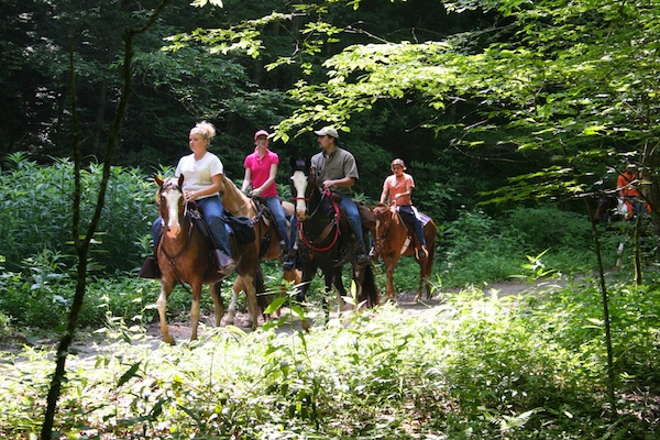 Horse riding Great Smokey Mountains