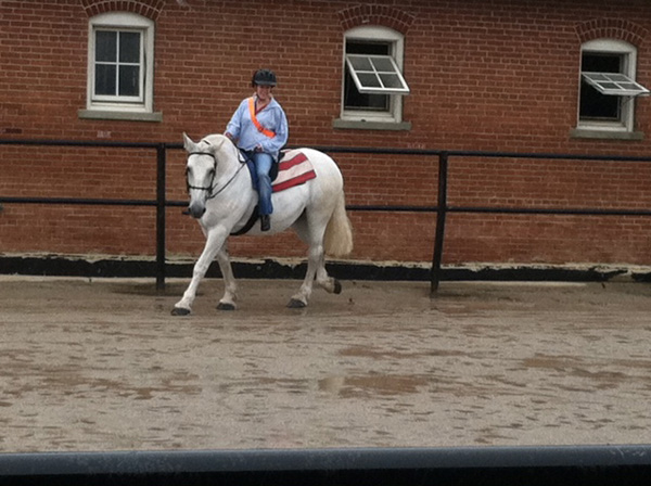 horse riding caisson platoon equine therapy
