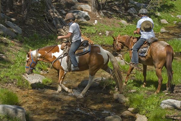 Sierra Mountains horse riding