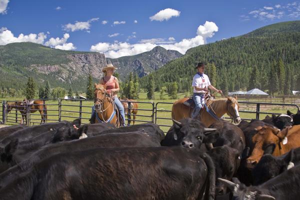 horseback riding wilderness trails ranch colorado