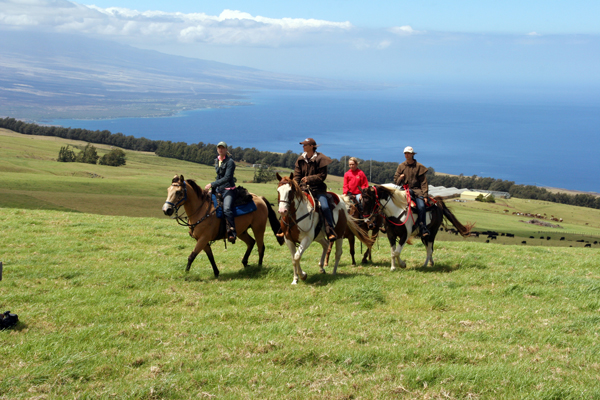 Kauha Ranch, Big Island