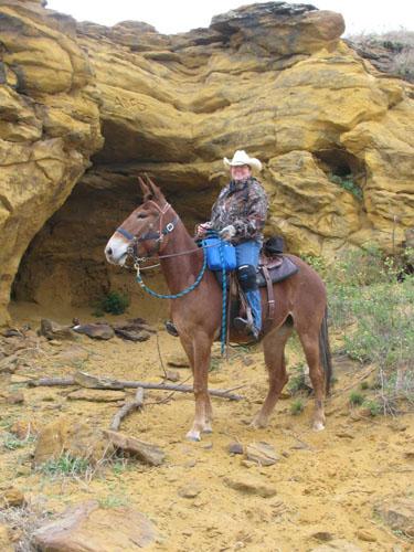 Kanopolis State Park horse riding kansas trails