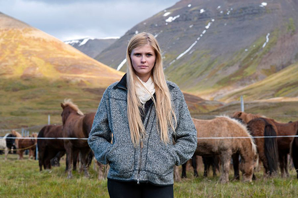 icelandic herders