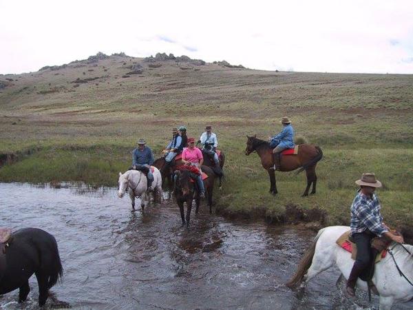 Study Abroad Australia Horseback Riding