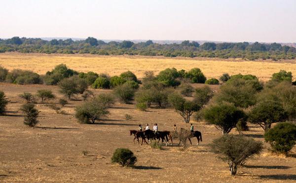 Tuli Region, Botswana landscapes
