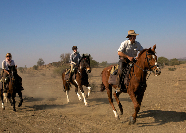 Canters in Limpopo, Botswana