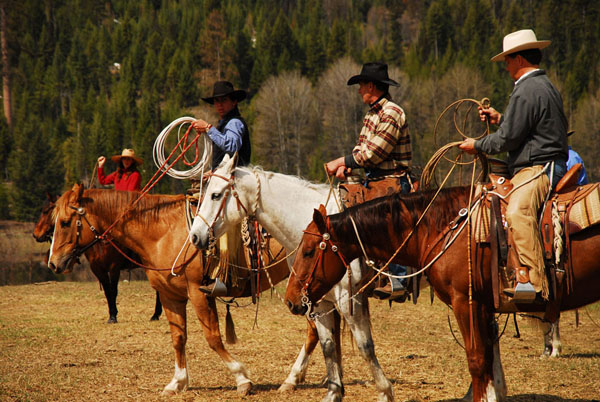 McGinnis Meadows Cattle Ranch in Montana