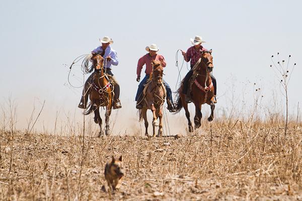 Mexican vaqueros at Xotolar Ranch