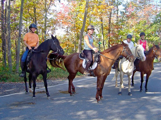 mohonk preserve trail riding horseback