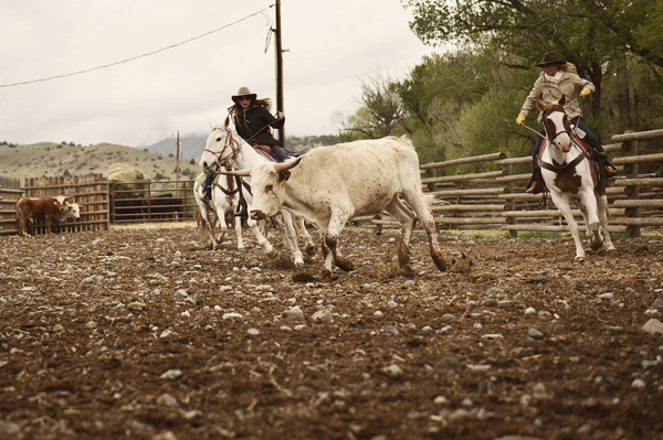 Mountain Sky Wild West Women Team Penning