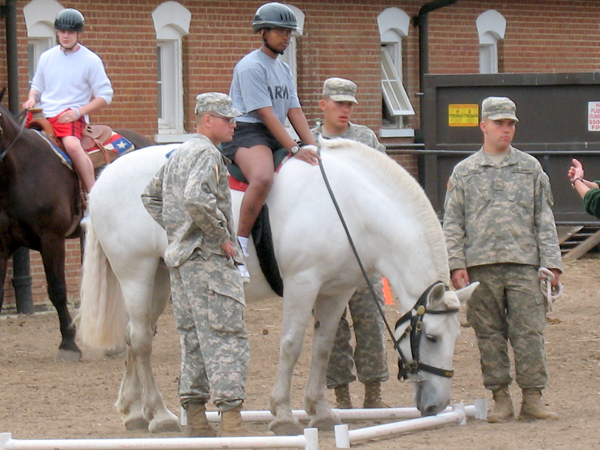 Caisson Platoon Equine Assisted Program