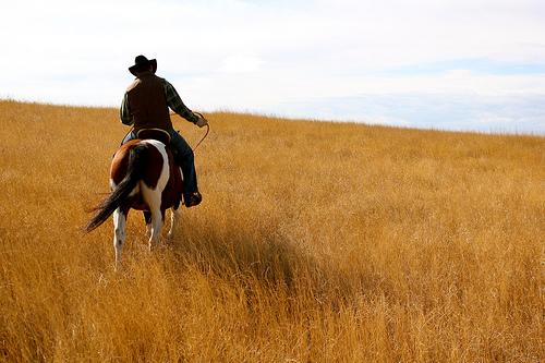 North Dakota Ranch