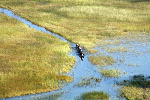 okavango delta horseback