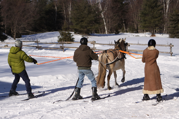 Pat Wolfe Skijoring Clinic Ontario