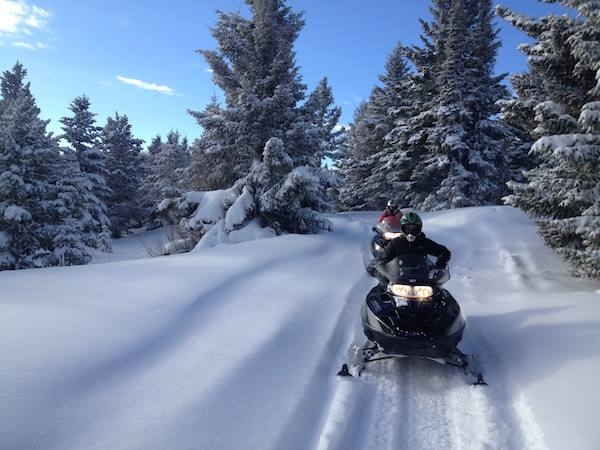 Paws Up snowmobiling