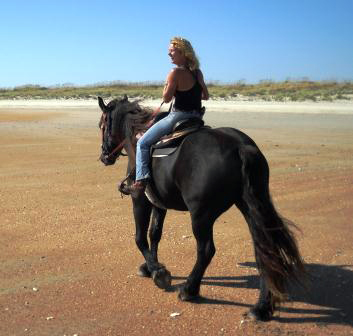 Outer Banks Equine Adventures