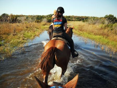 Outer Banks Horse Riding